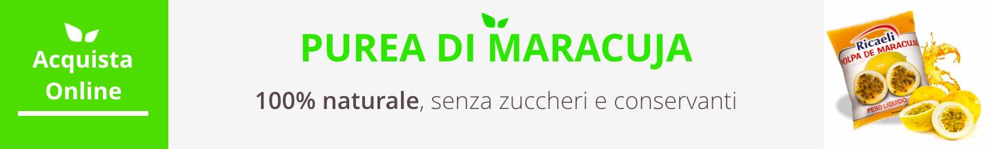 purea di maracuja surgelata signorsucco acquista online fruttaweb