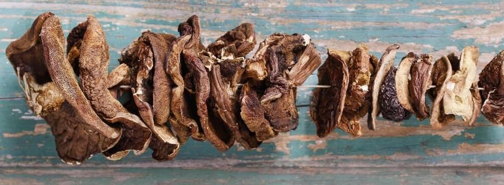 funghi freschi essiccati acquista online fruttaweb
