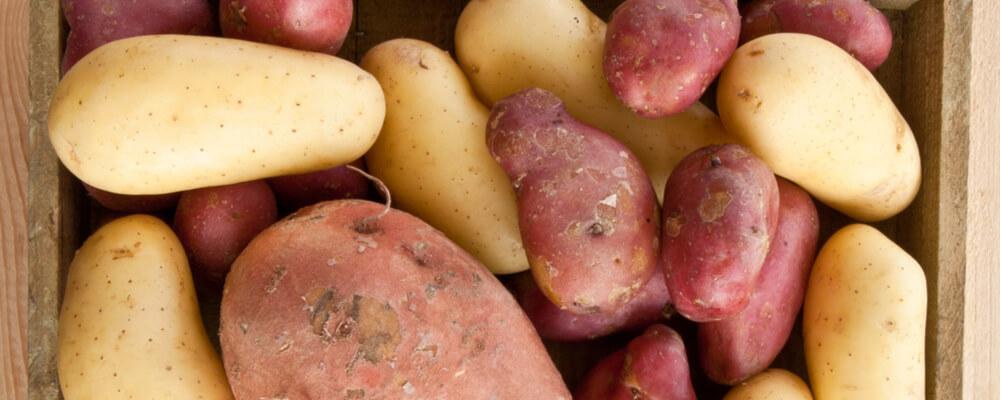 patate acquista online fruttaweb