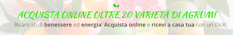 agrumi acquista online fruttaweb