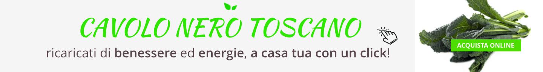 cavolo nero toscano acquista online fruttaweb
