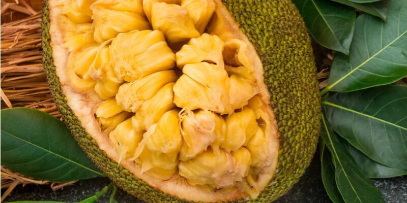jackfruit fresco