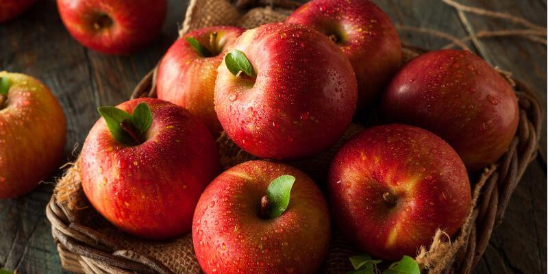 Mele rosse tutte le variet di mela rossa blog di fruttaweb - Mele fuji coltivazione ...