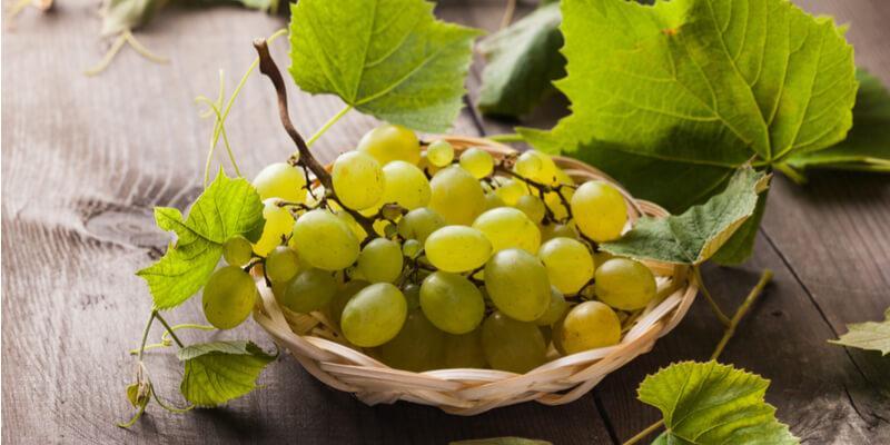 uva bianca contro il colesterolo
