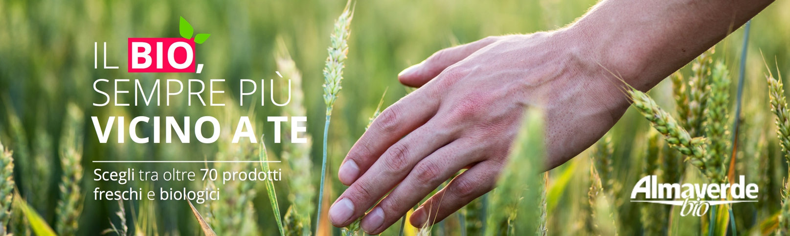 almaverde bio il primo produttore di biologico in italia sbarca su Fruttaweb.com