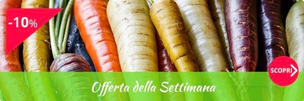 Frutta e verdura fresca in vendita online fruttaweb for Cucinare gli agretti