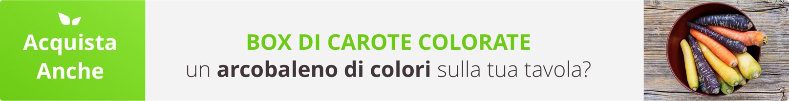 Acquista Online Box di Carote Colorate con un Click su FruttaWeb.com