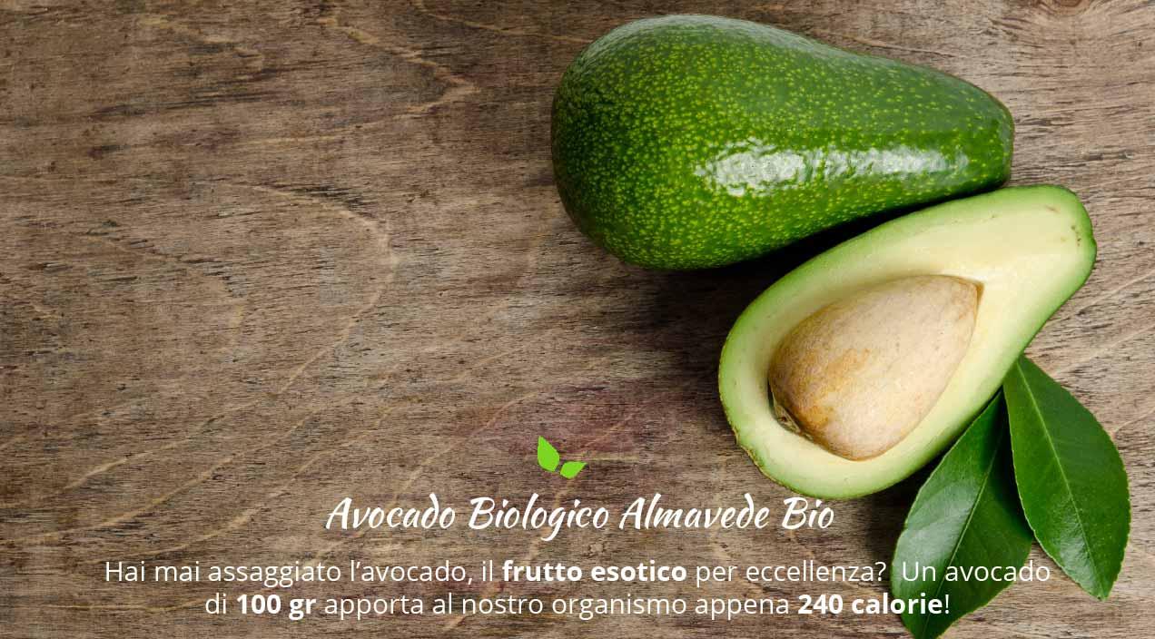Avocado: benefici e valori nutrizionali