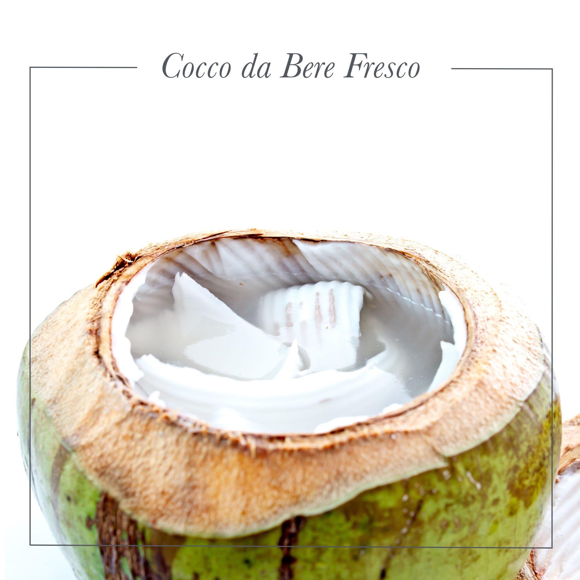 cocco da bere fresco: solo su FruttaWeb acquisti i migliori frutti tropicali a portata di click!