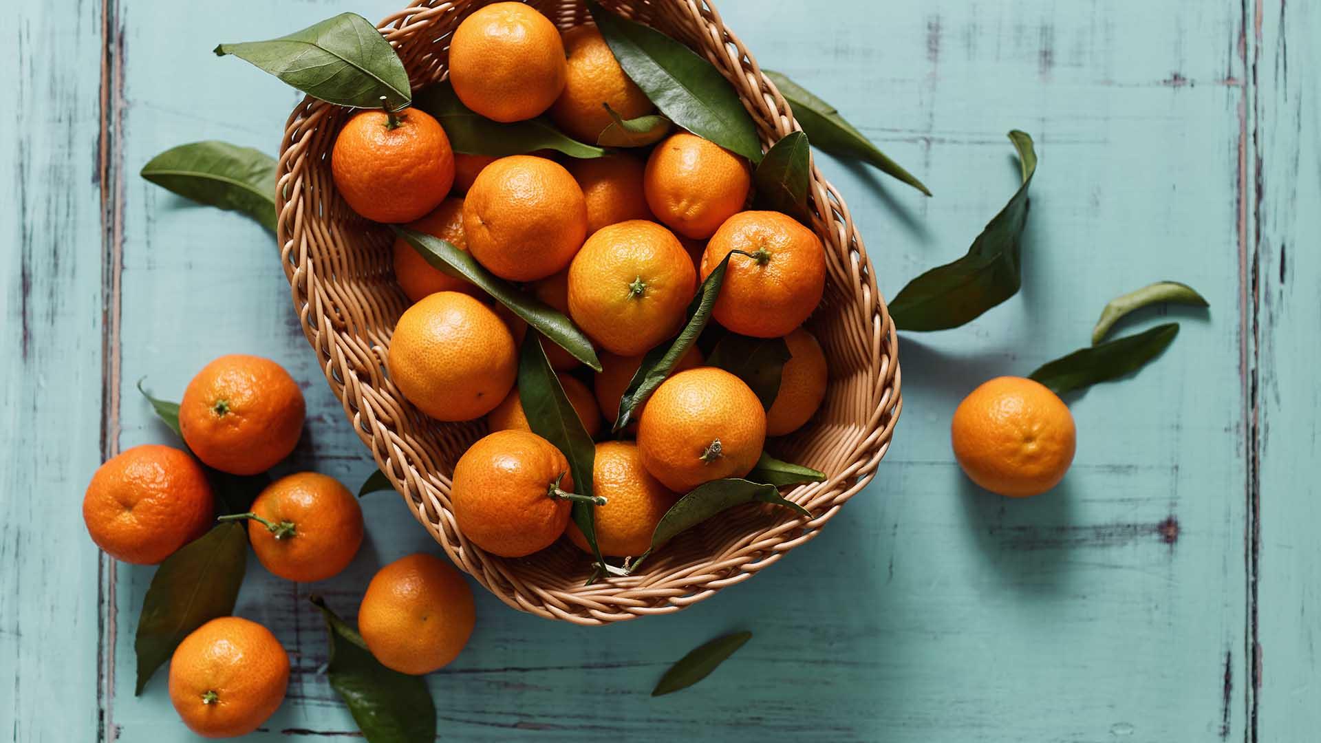 Agrumi elenco completo e lista delle propriet blog di for Elenco alberi da frutto