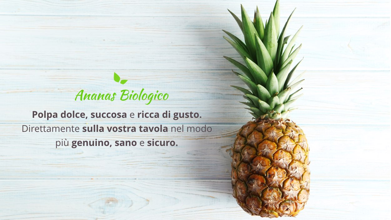 proprieta e benefici dell'ananas biologica