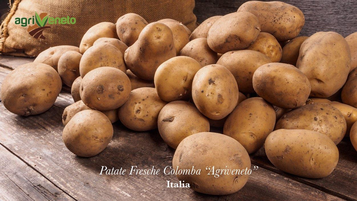 Patate Fresche Colomba Agriveneto: acquista online su FruttaWeb.com