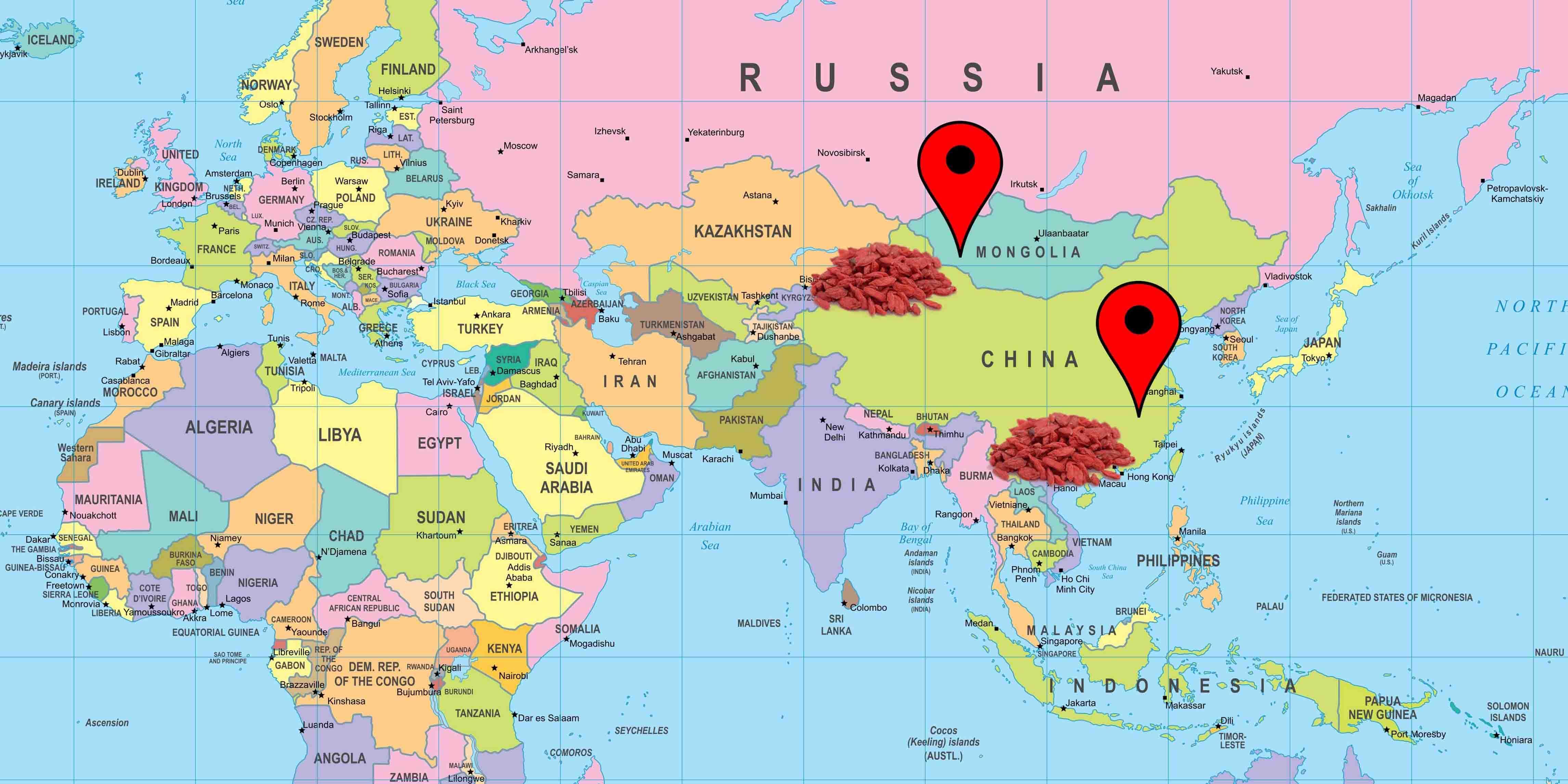 Cartina prodotto bacche di Goji