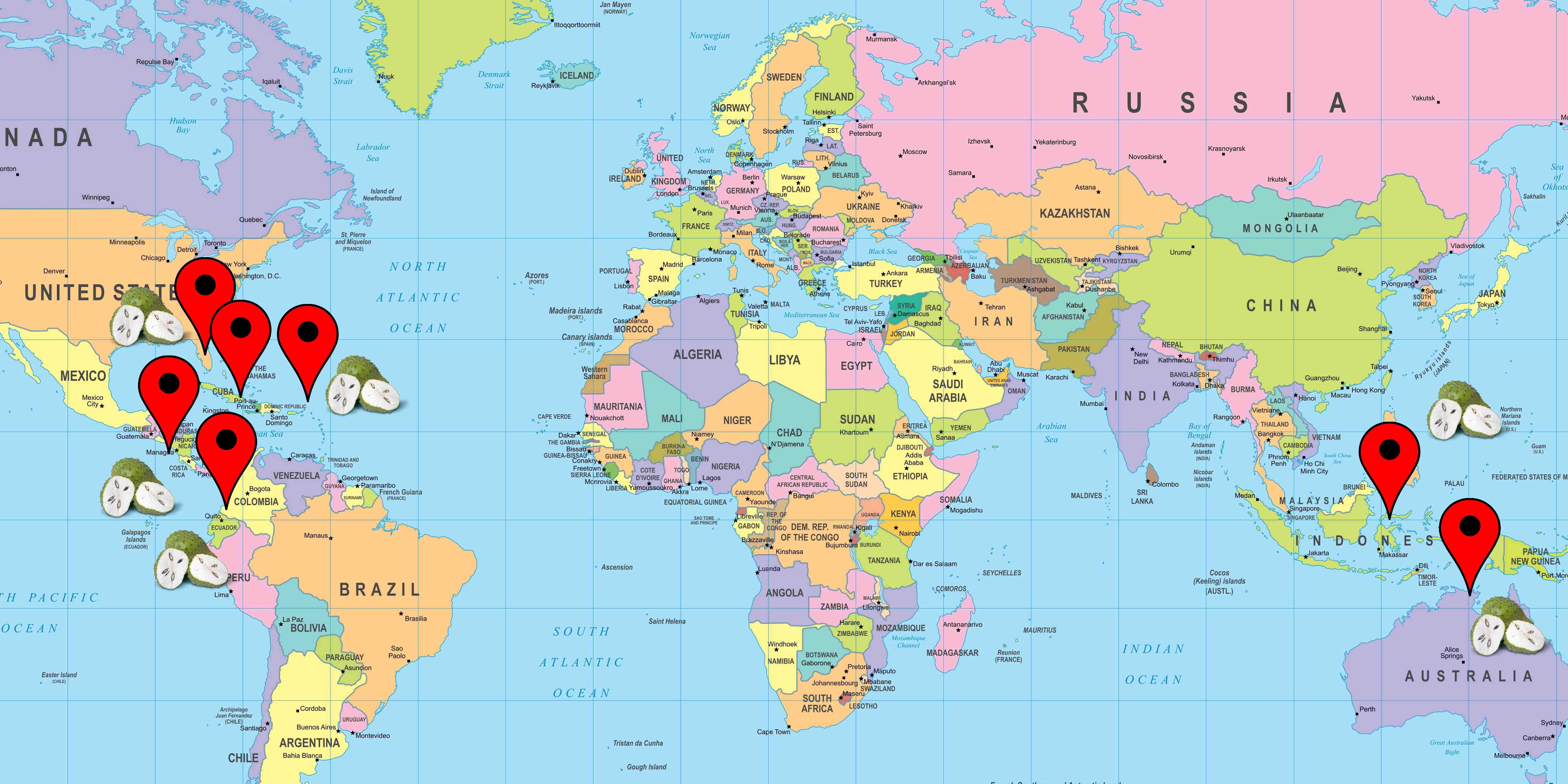 Graviola fresca cartina distribuzione prodotto e origine