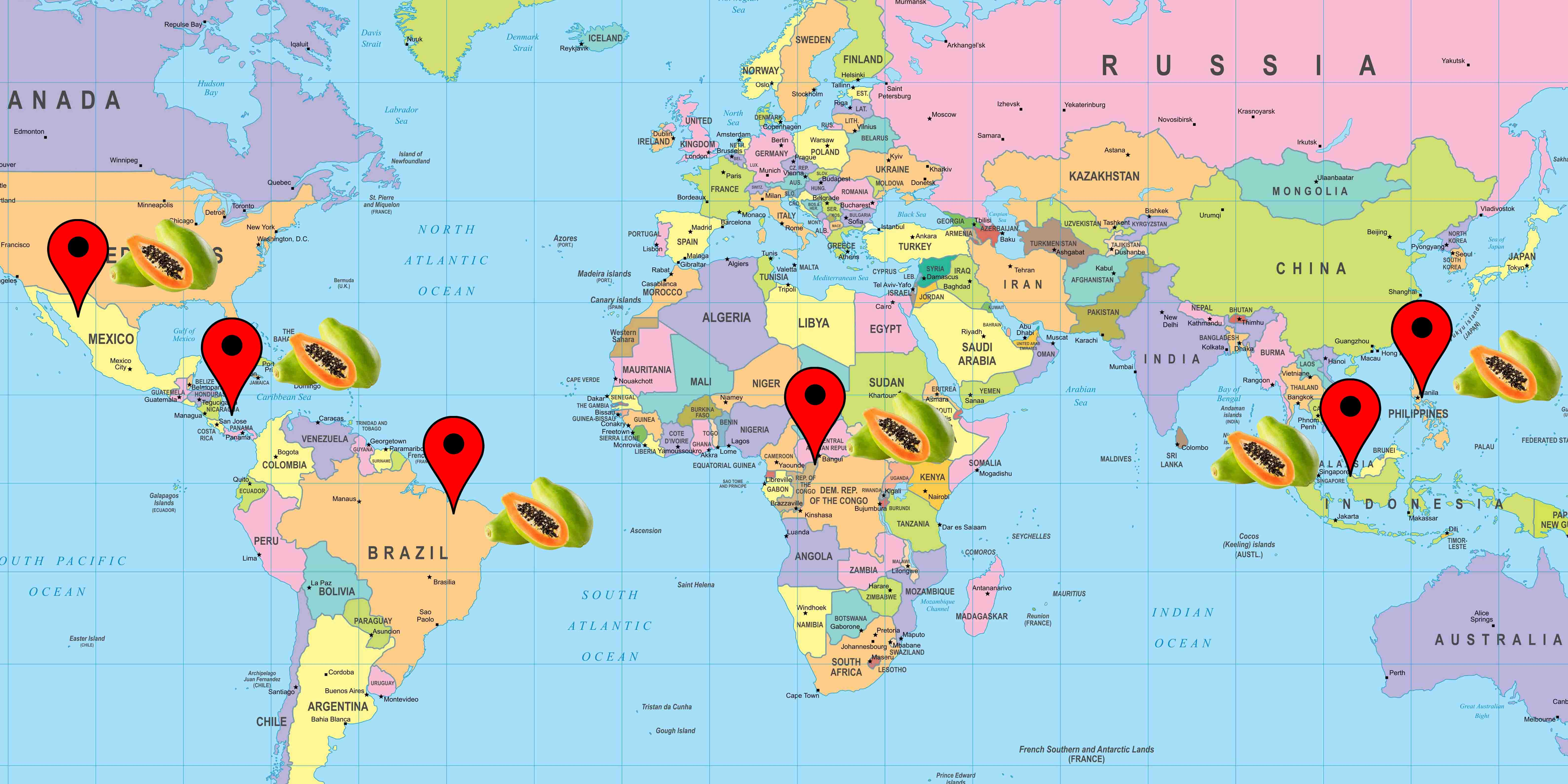 Cartina origine distribuzione papaya