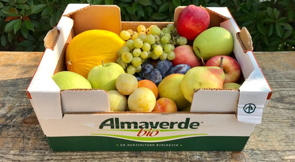 Acquista Online Cassetta Frutta di Stagione Biologica su FruttaWeb.com