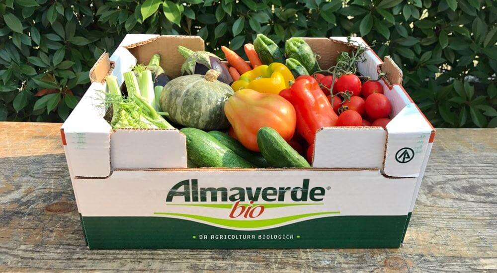 Acquista Online Cassetta di Verdura Biologica Almaverde Bio su FruttaWeb.com
