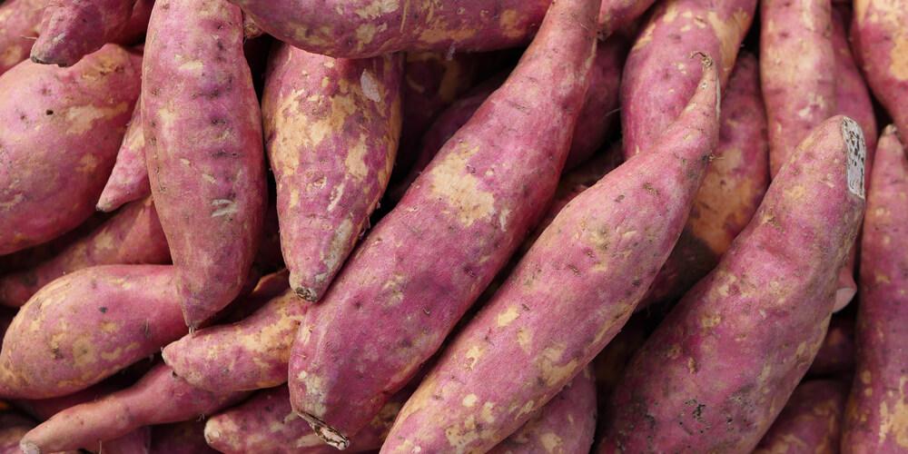 Cassetta di patate dolci bianche