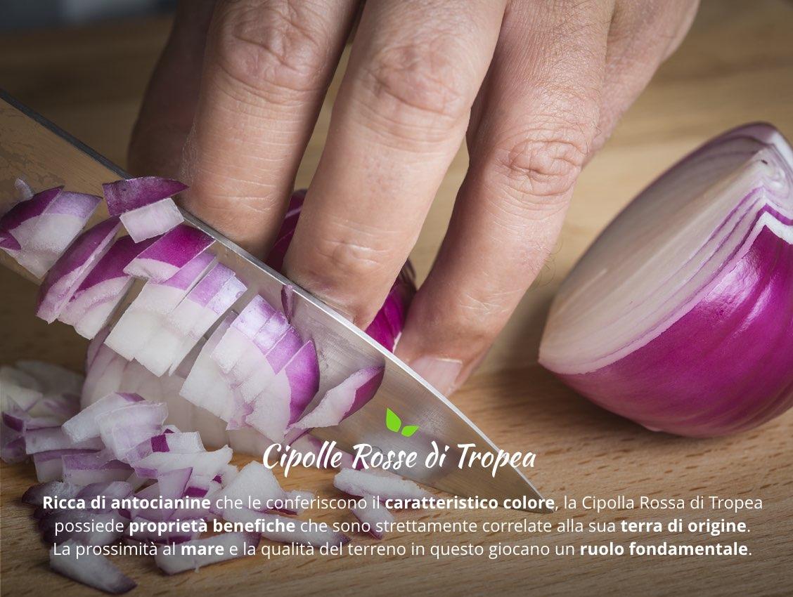 Proprietà e Benefici della Cipolla Rossa di Tropea