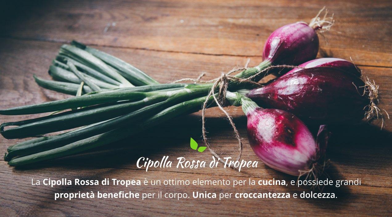Cipolla Rossa di Tropea: le caratteristiche della Cipolla Italiana nel Mondo