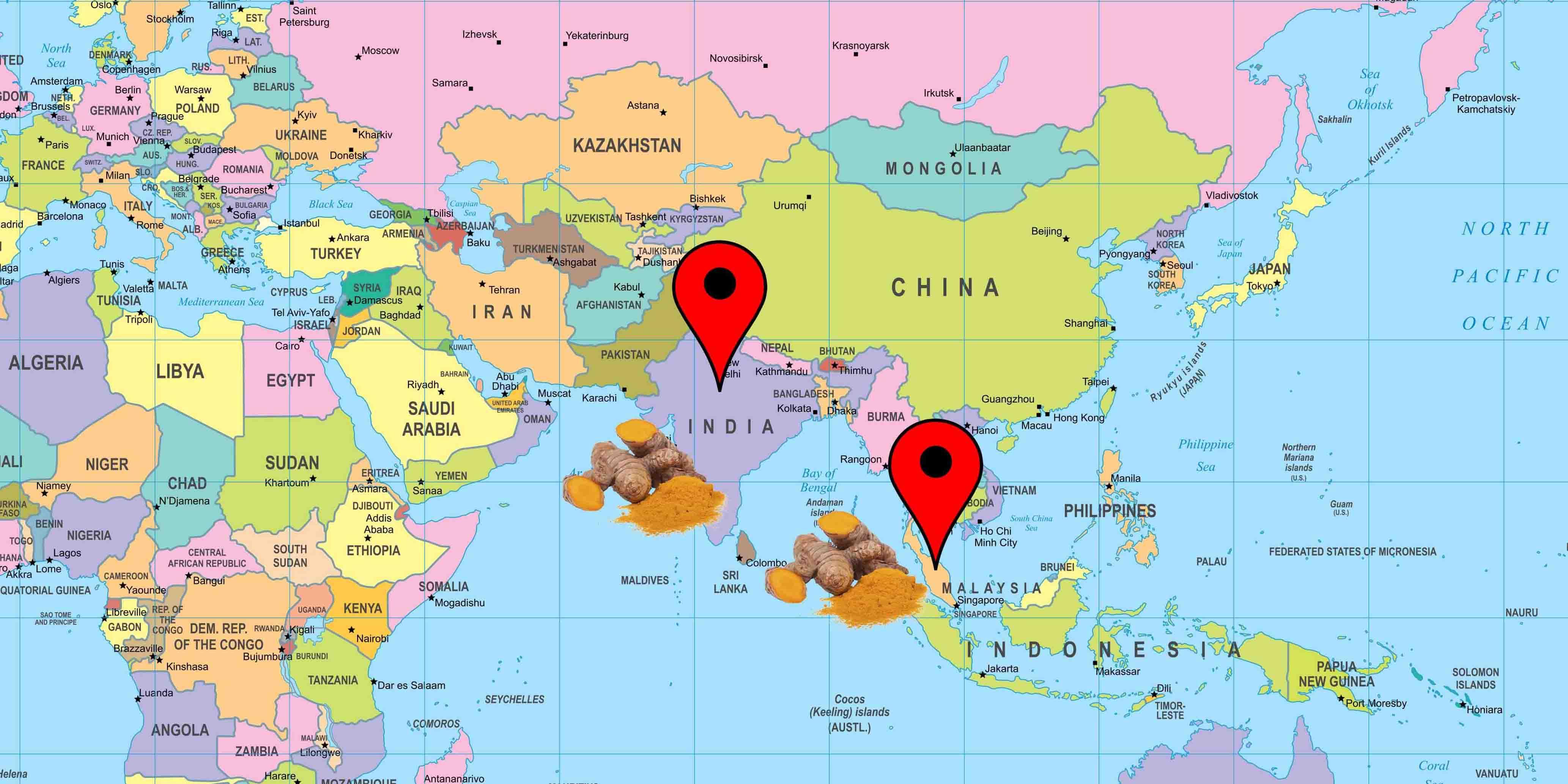 Cartina curcuma prodotto distribuzione