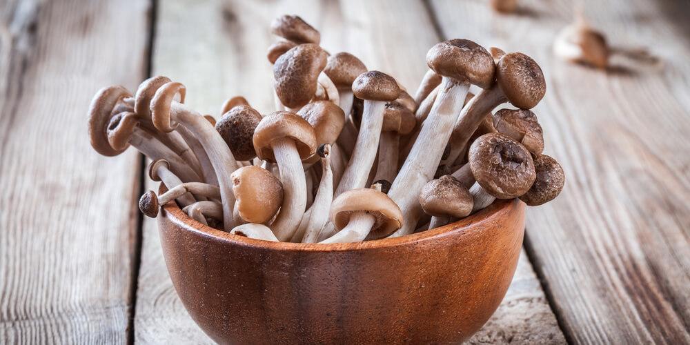 Funghi Shimeji marroni freschi