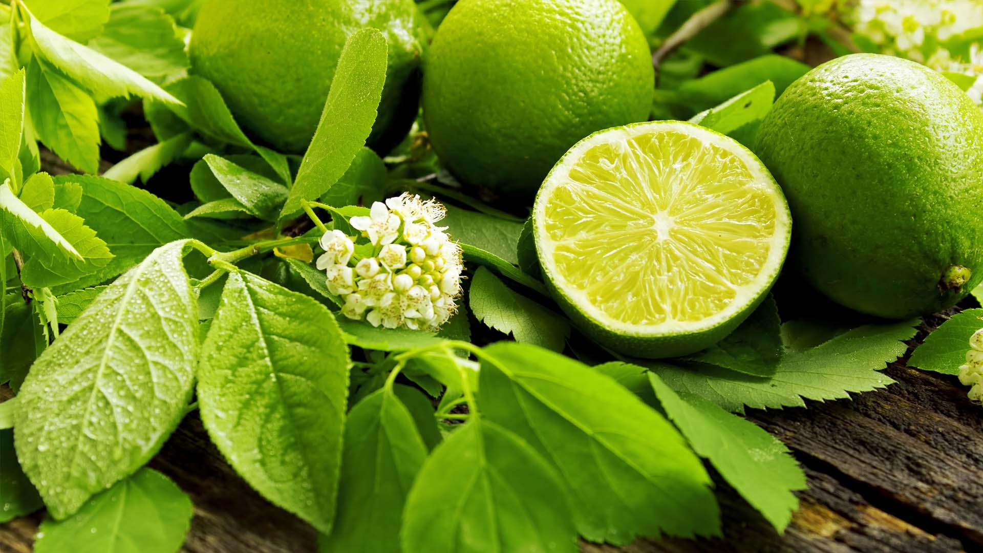Lime Fresco su FruttaWeb