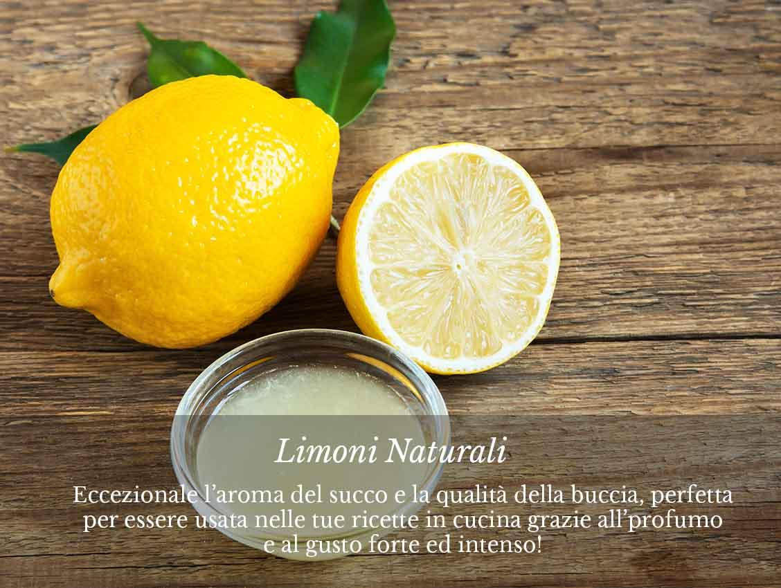 Ordina ora online i limoni naturali italiani su fruttaweb!