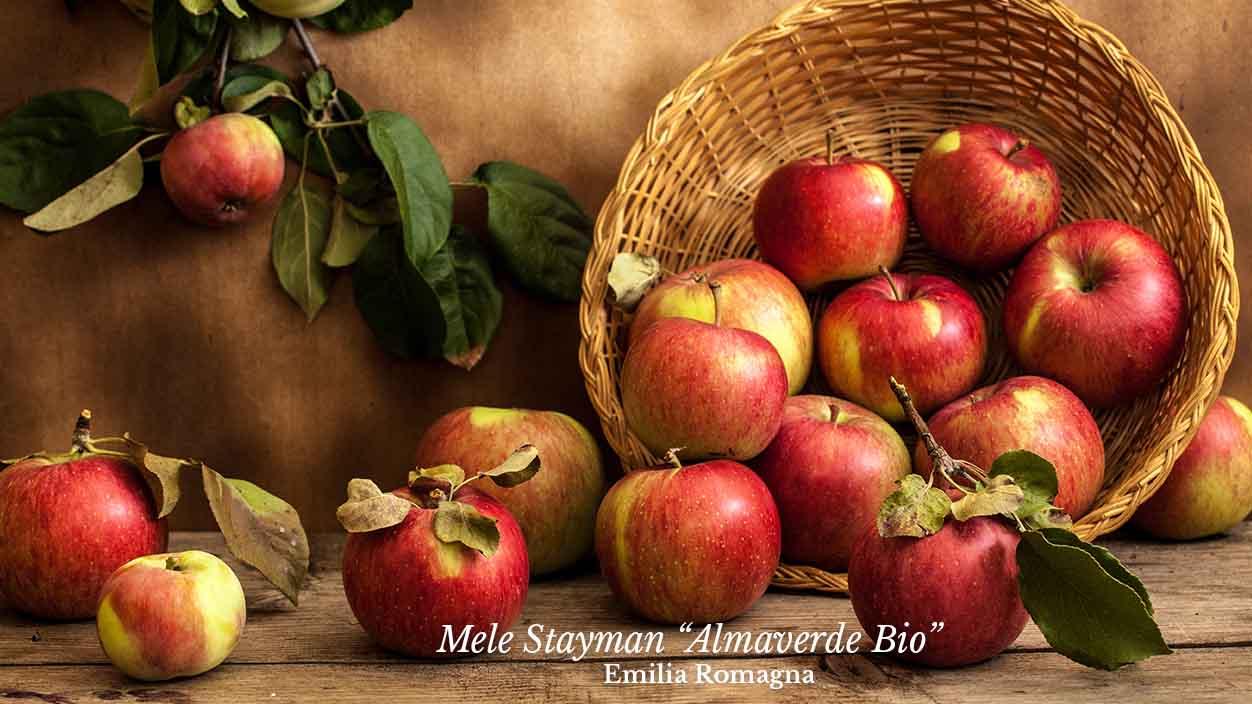 "Ordina ora le mele stayman ""almaverde bio"" su fruttaweb!"