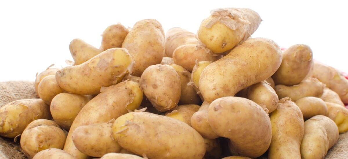 Patate Ratte Perle della Tuscia Acquista Online