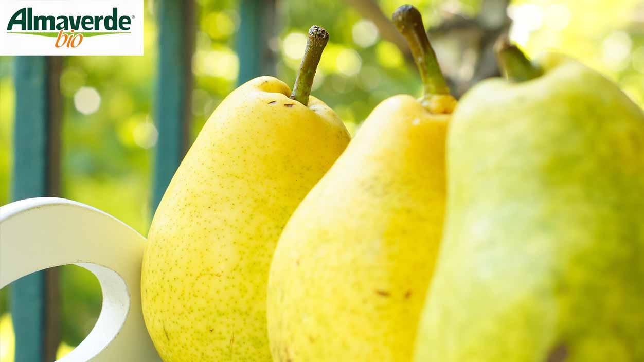"Ordina ora online le pere williams gialle ""Almaverde bio"" su FruttaWeb!"
