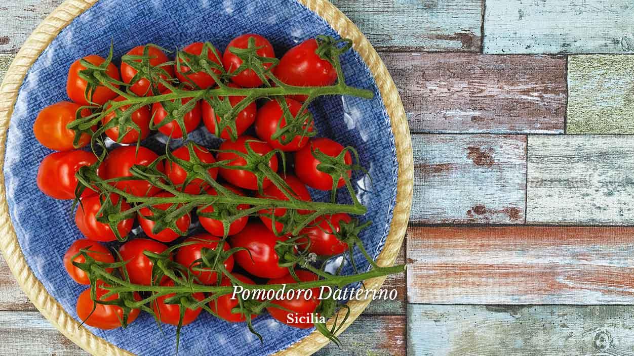 pomodoro datterino italiano siciliano ordina ora su fruttaweb