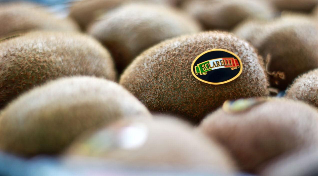 Scopri l'eccellenza italiana a marchio Solarelli su fruttaweb!