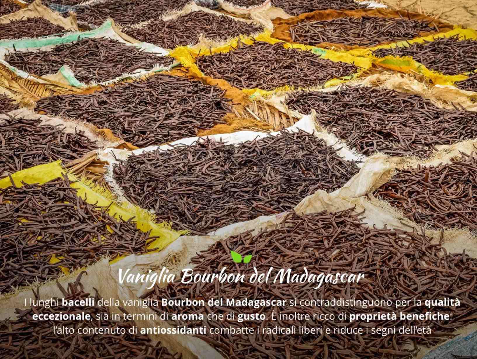 Proprietà e benefici dei Bacelli di Vaniglia del Madagascar. Acquistale Online con un Click su FruttaWeb.com