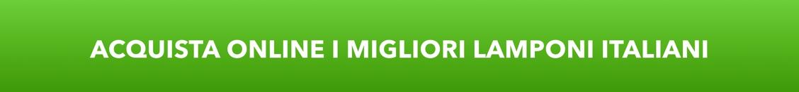 Acquista Lamponi Italiani online su FruttaWeb