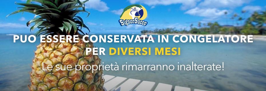 acquista online purea ananas Signorsucco fruttaweb