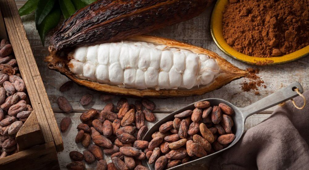 cacao-ricette