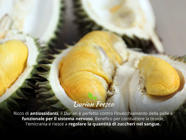 durian fresco caratteristiche