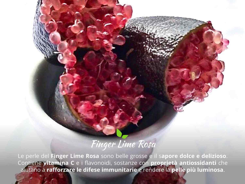 finger lime rosa caratteristiche