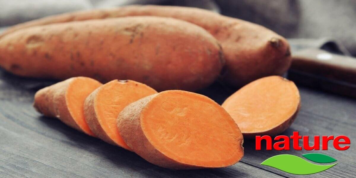 Patate dolci a pasta arancione Italiane Nature